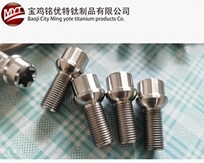 武汉钛合金汽车轮廓螺栓